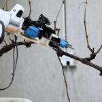 Agricoltura, arrivano nuovi robot
